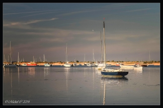 photos-cap-ferret