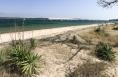 Parc a huîtres face a la dune du Pyla.
