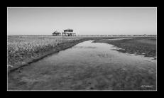Photos noir et blanc , Bassin d'Arcachon.