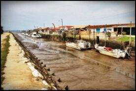 image-marée-basse-chenal-port