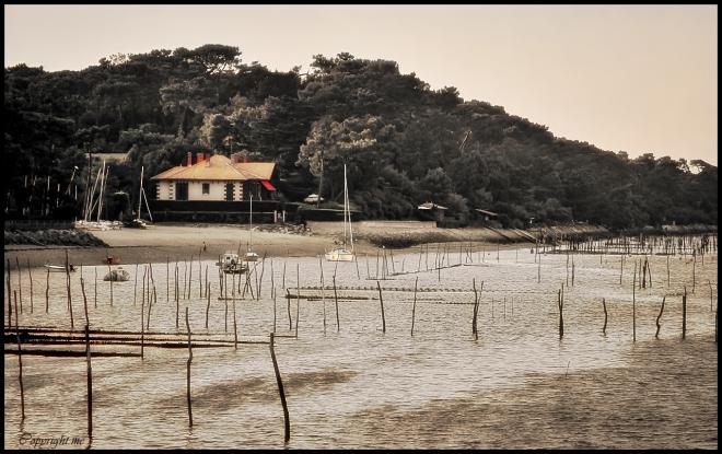 La Villa Madeleine occupe un des meilleurs emplacements qui soit au Cap-Ferret : au bord de l'eau mais en hauteur, elle domine le Bassin