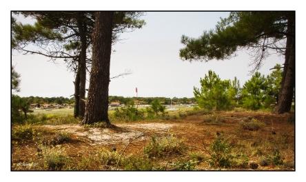 Photos,image du Bassin d'Arcachon